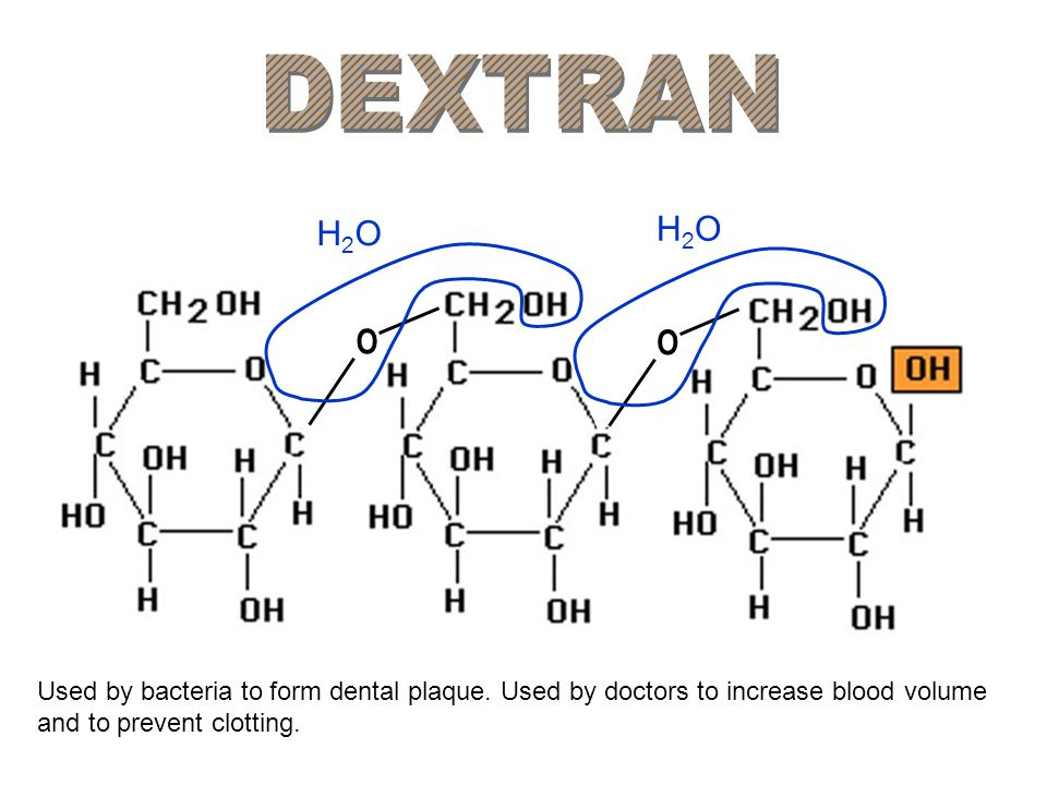 DEXTRAN H2O. H2O. O. O. Used by bacteria to form dental plaque.