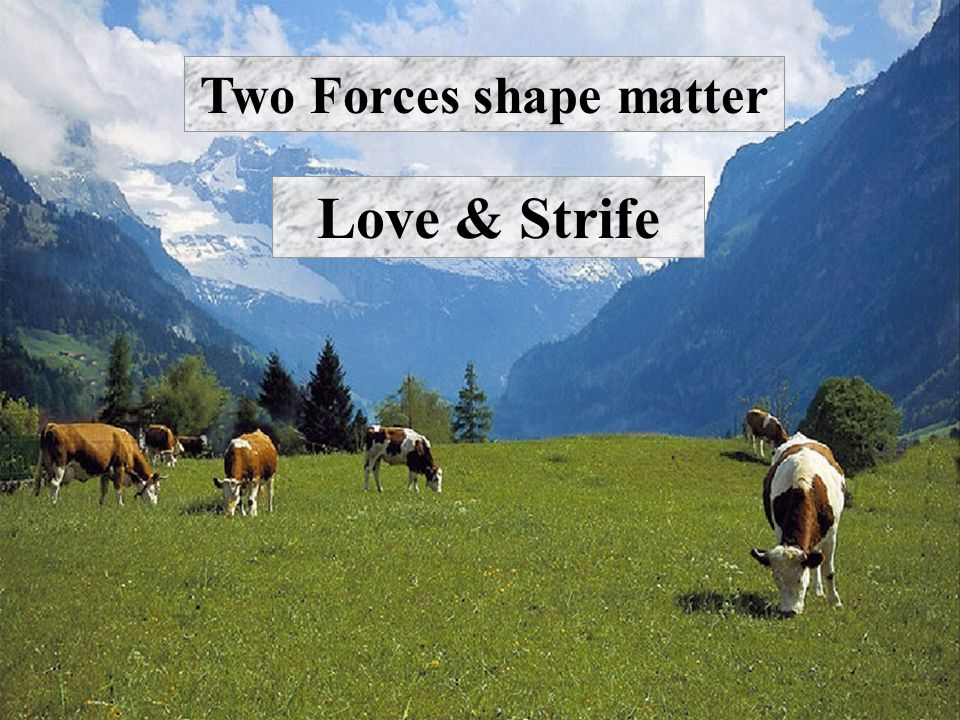 Two Forces shape matter