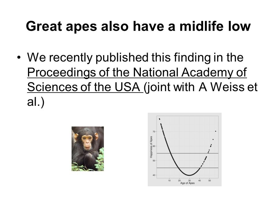 Great apes also have a midlife low