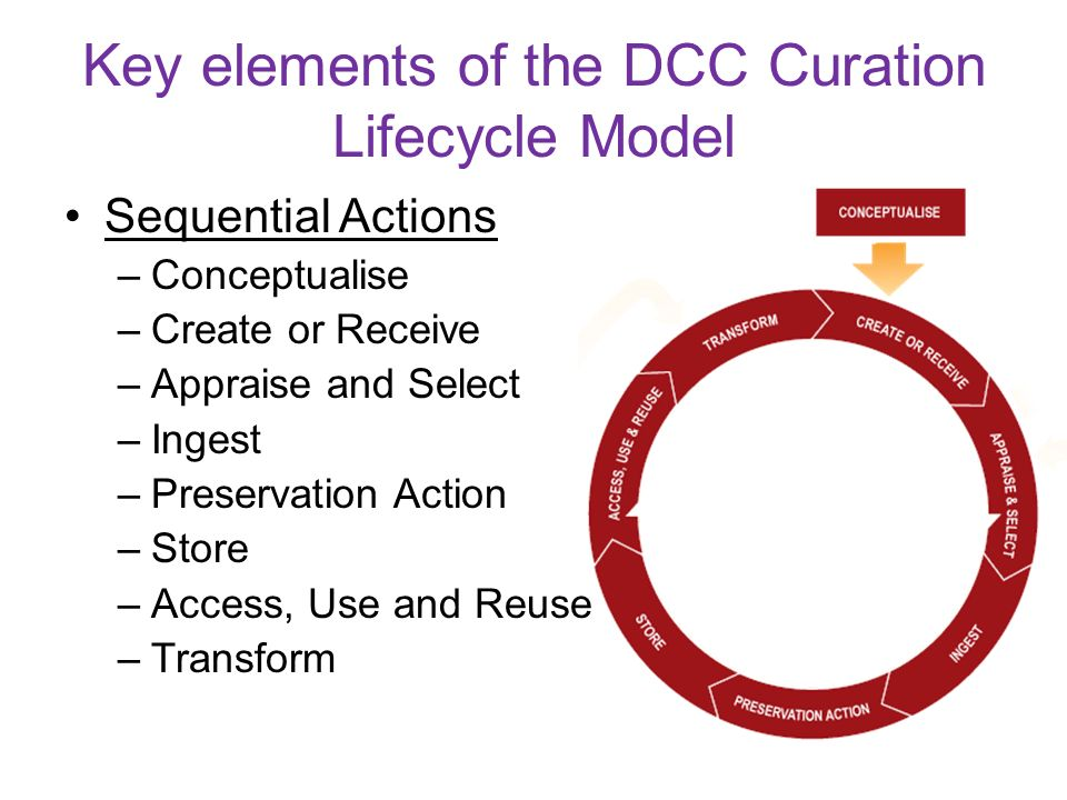 Key elements of the DCC Curation Lifecycle Model