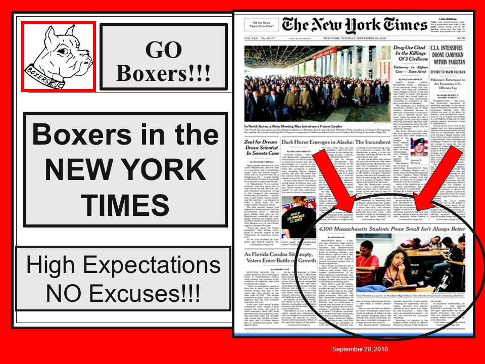 Boxers in the NEW YORK TIMES