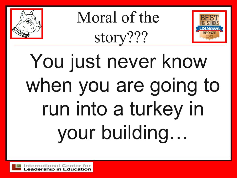 Moral of the story You just never know when you are going to run into a turkey in your building…