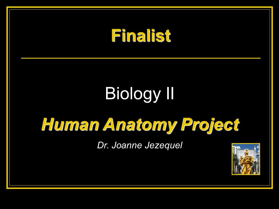Finalist Human Anatomy Project