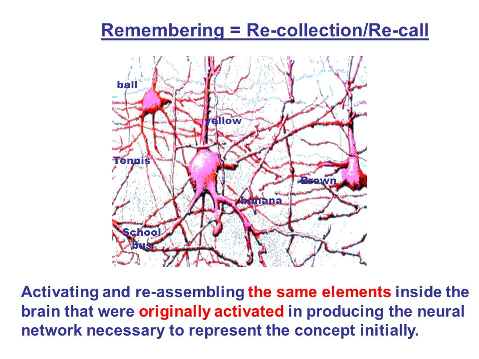 Remembering = Re-collection/Re-call
