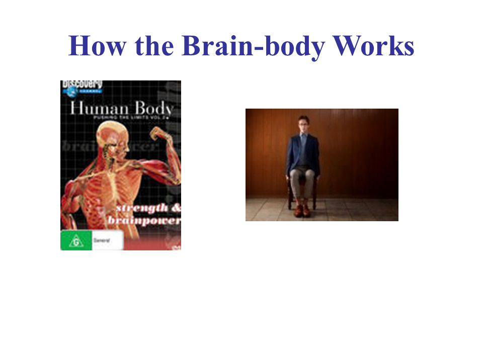 How the Brain-body Works