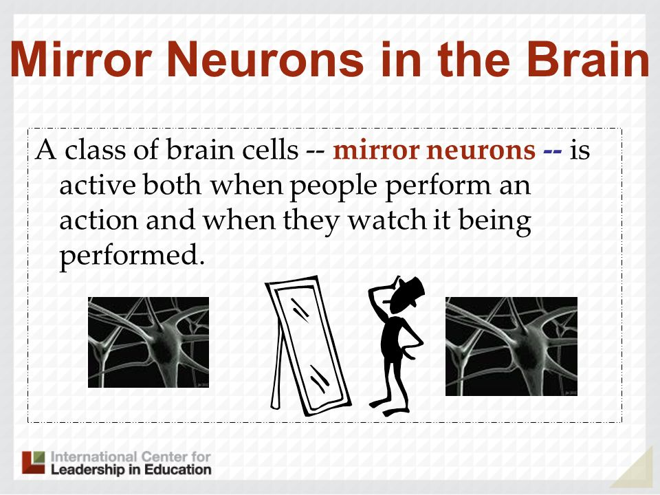 Mirror Neurons in the Brain
