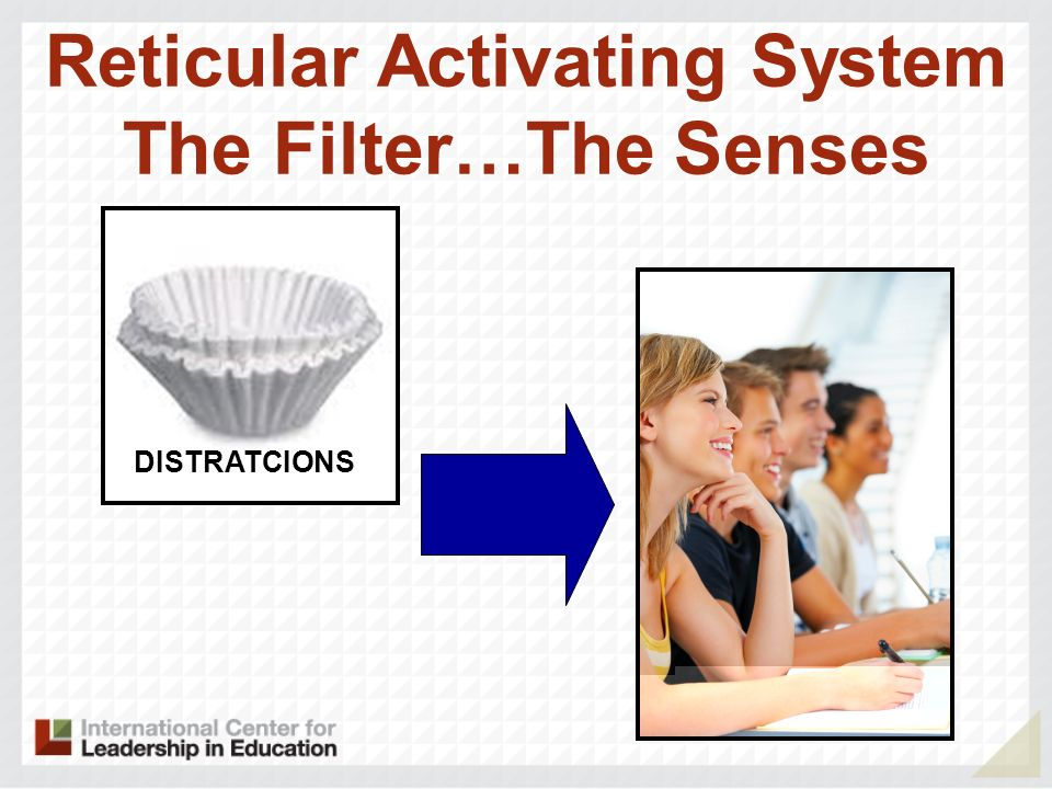 Reticular Activating System The Filter…The Senses