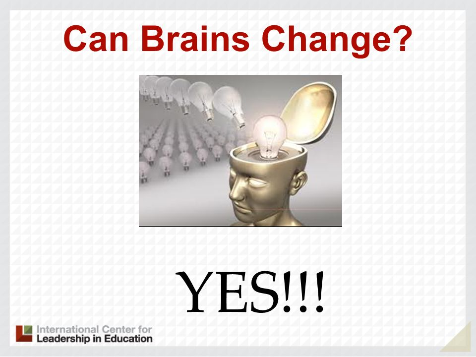 Can Brains Change YES!!!