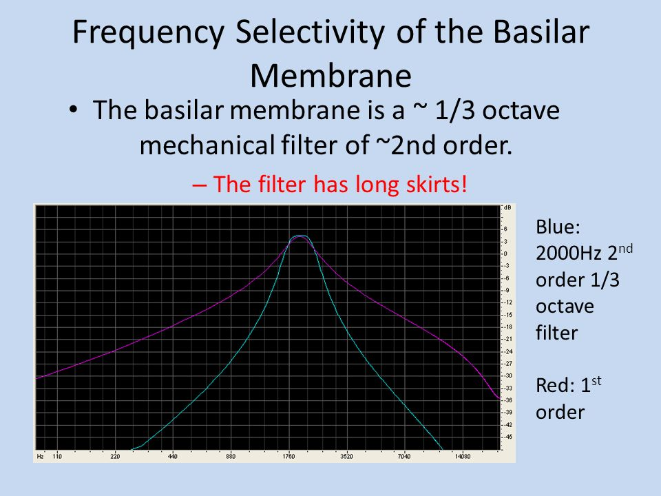 Frequency Selectivity of the Basilar Membrane