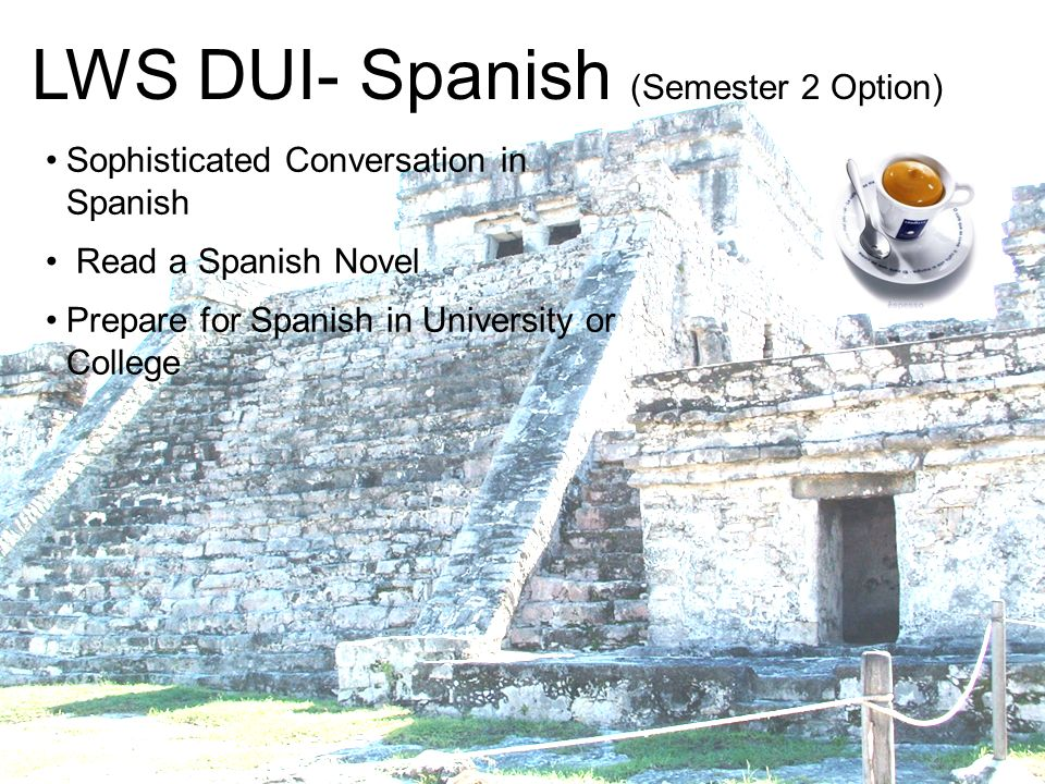 LWS DUI- Spanish (Semester 2 Option)