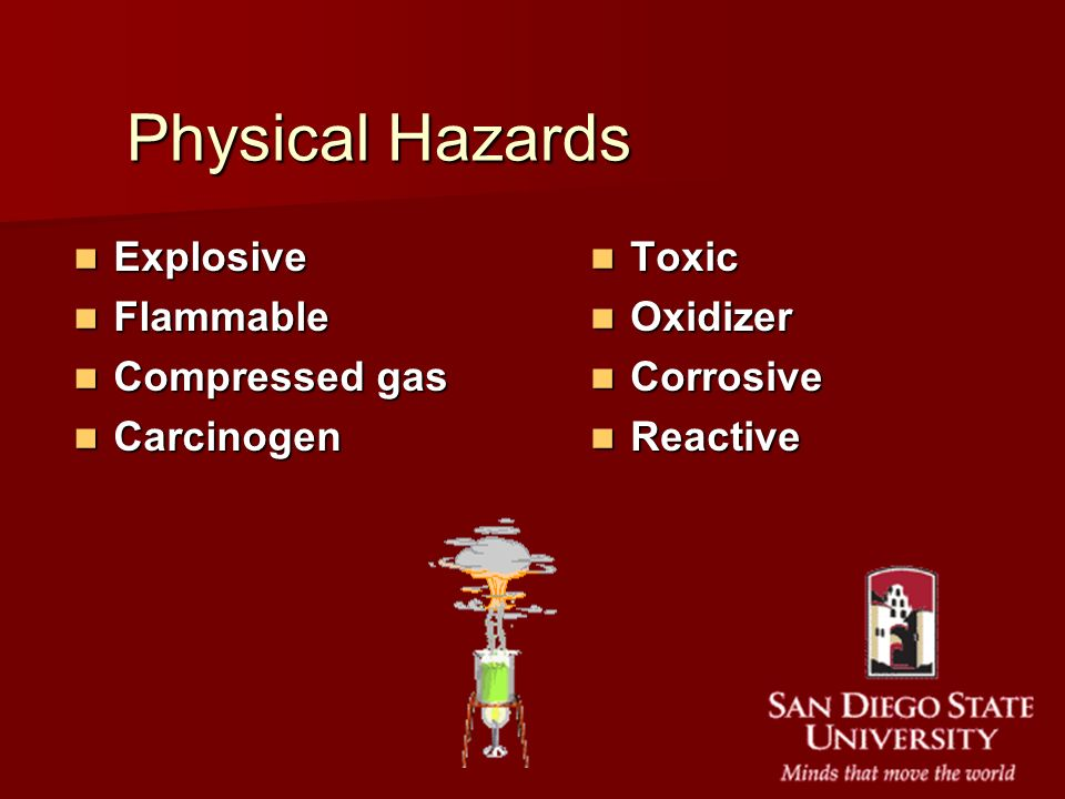 Physical Hazards Explosive Flammable Compressed gas Carcinogen Toxic