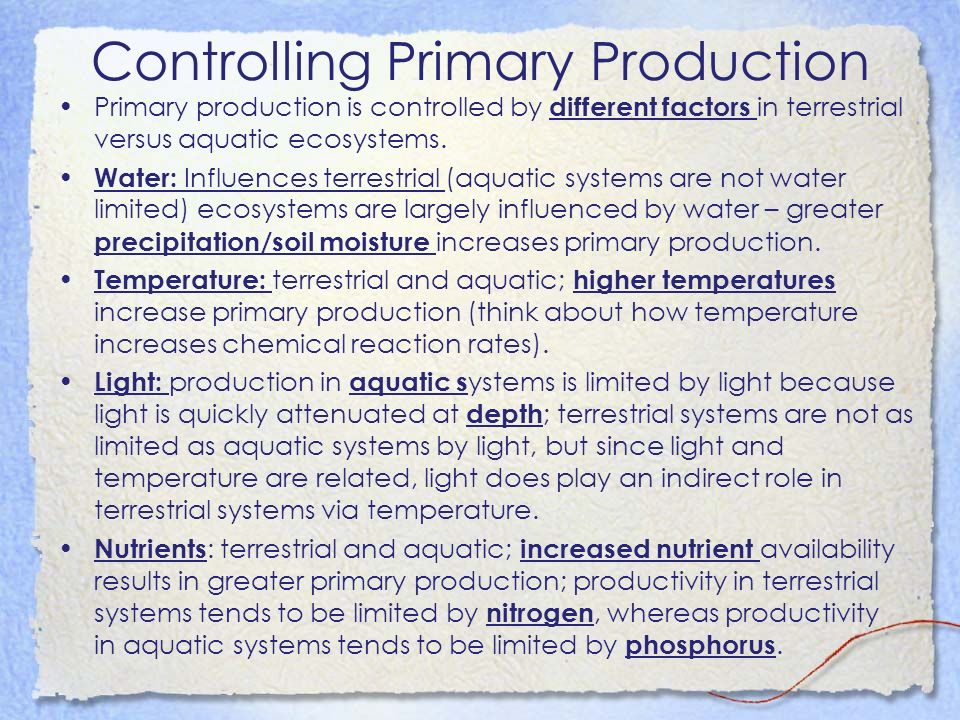Controlling Primary Production