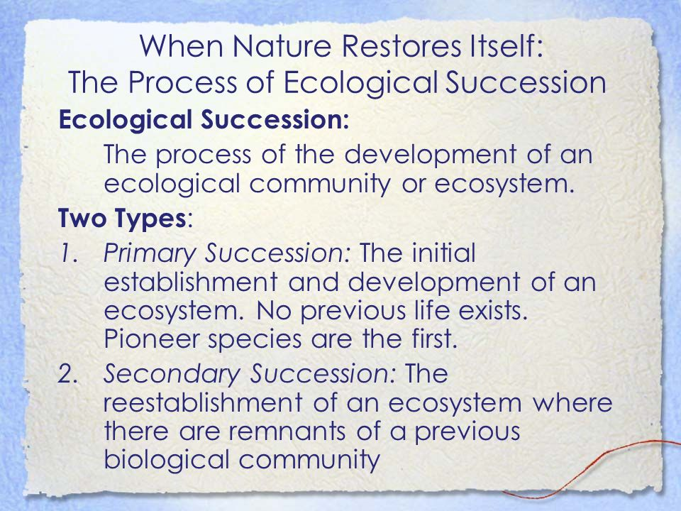 When Nature Restores Itself: The Process of Ecological Succession