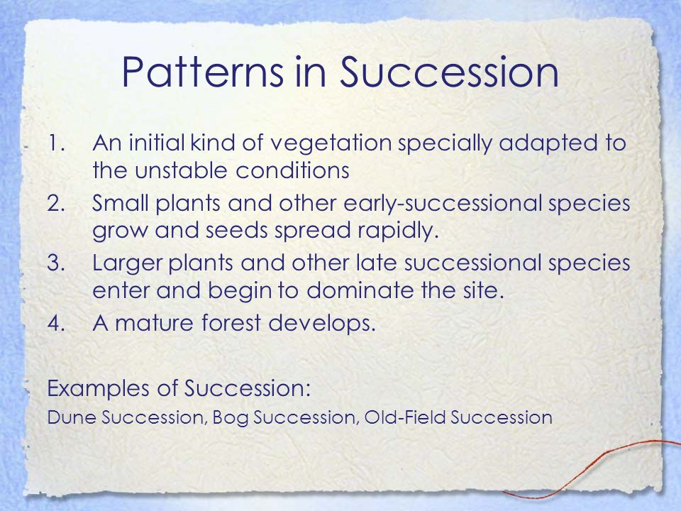 Patterns in Succession