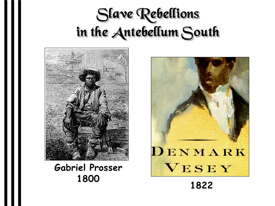 Slave Rebellions in the Antebellum South