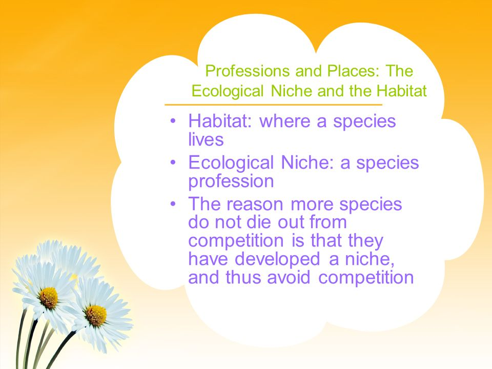 Professions and Places: The Ecological Niche and the Habitat