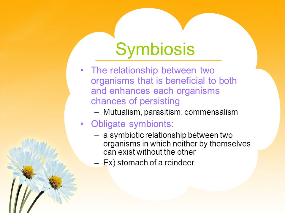 Symbiosis The relationship between two organisms that is beneficial to both and enhances each organisms chances of persisting.