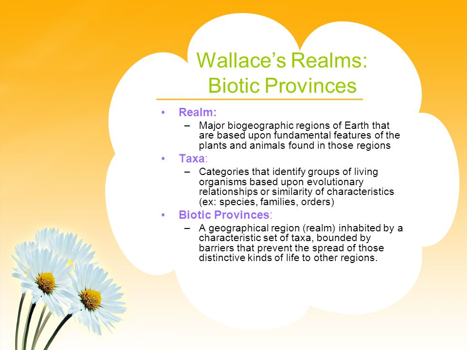 Wallace's Realms: Biotic Provinces