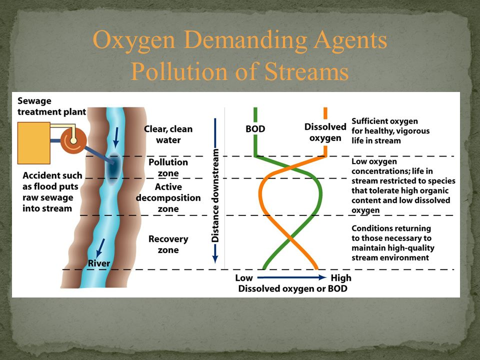 Oxygen Demanding Agents Pollution of Streams