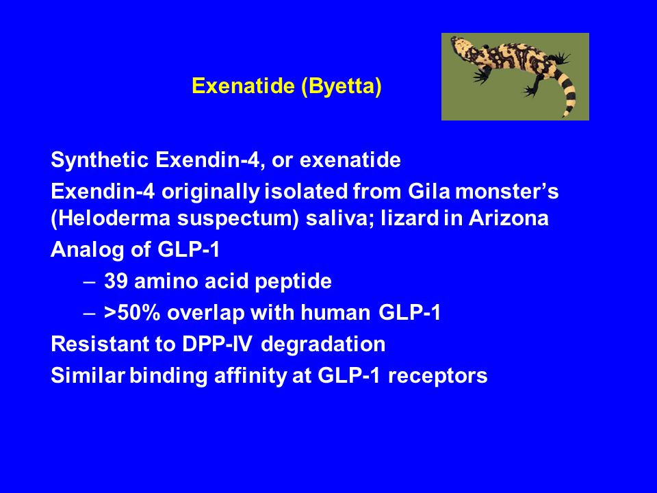 Exenatide (Byetta) Synthetic Exendin-4, or exenatide.