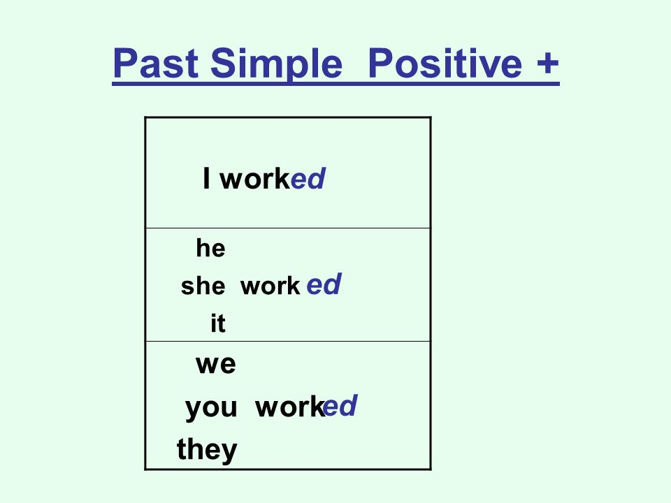 Past Simple Positive + I work he she work it we you work they ed ed ed