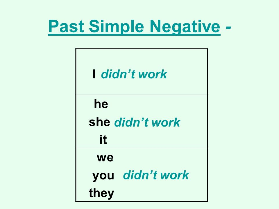 Past Simple Negative - I she it didn't work you they didn't work