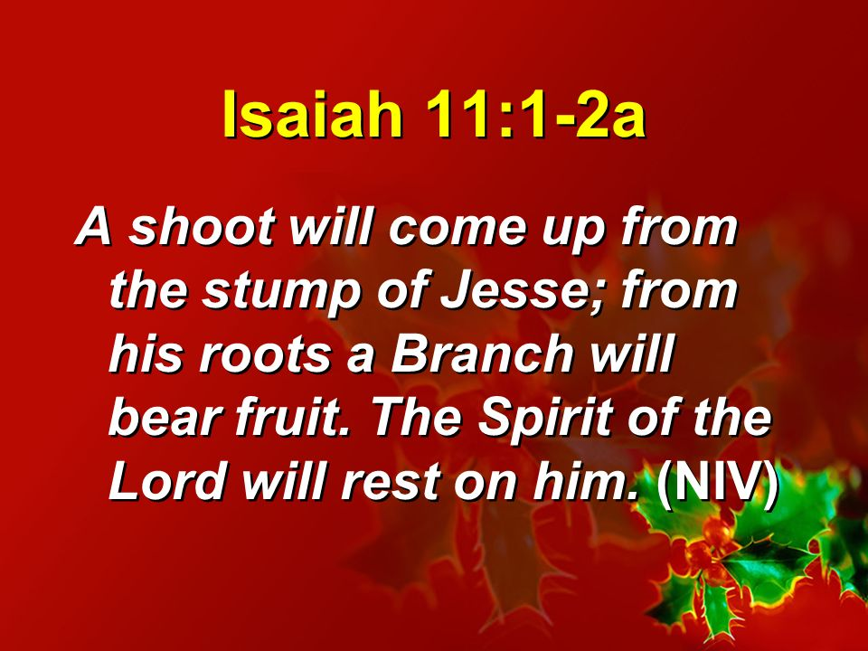 Isaiah 11:1-2a A shoot will come up from the stump of Jesse; from his roots a Branch will bear fruit.