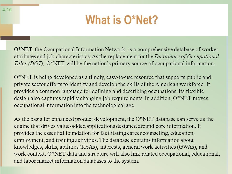 What is O*Net
