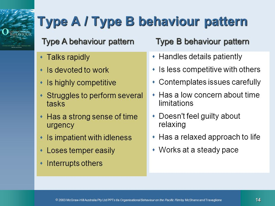 Type A / Type B behaviour pattern