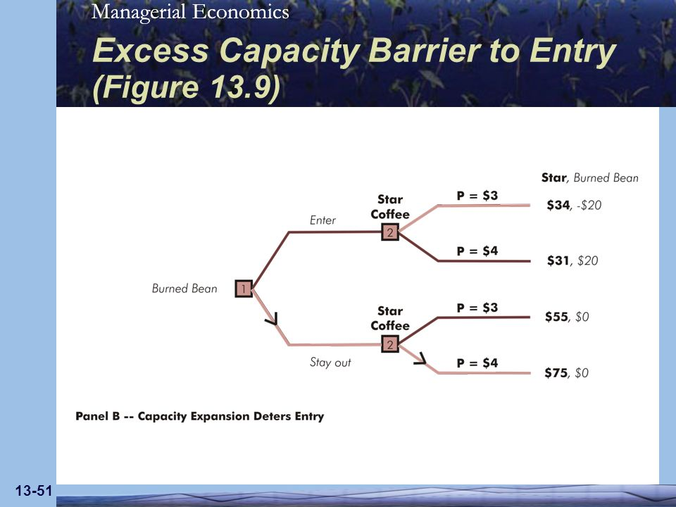 Excess Capacity Barrier to Entry (Figure 13.9)