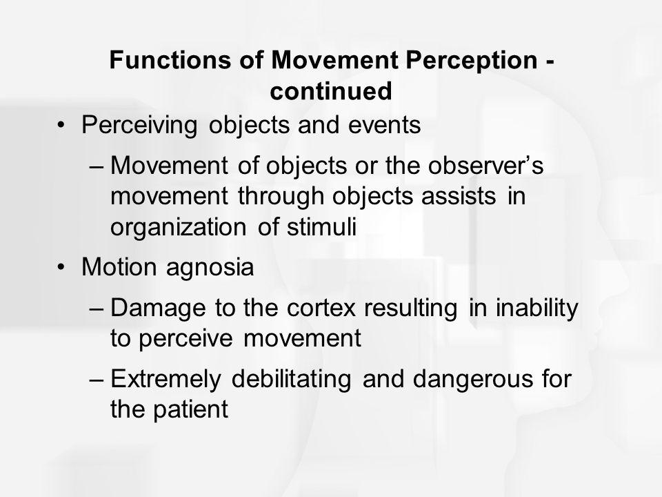 movement perception