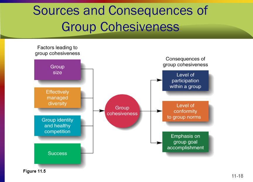 Sources and Consequences of Group Cohesiveness