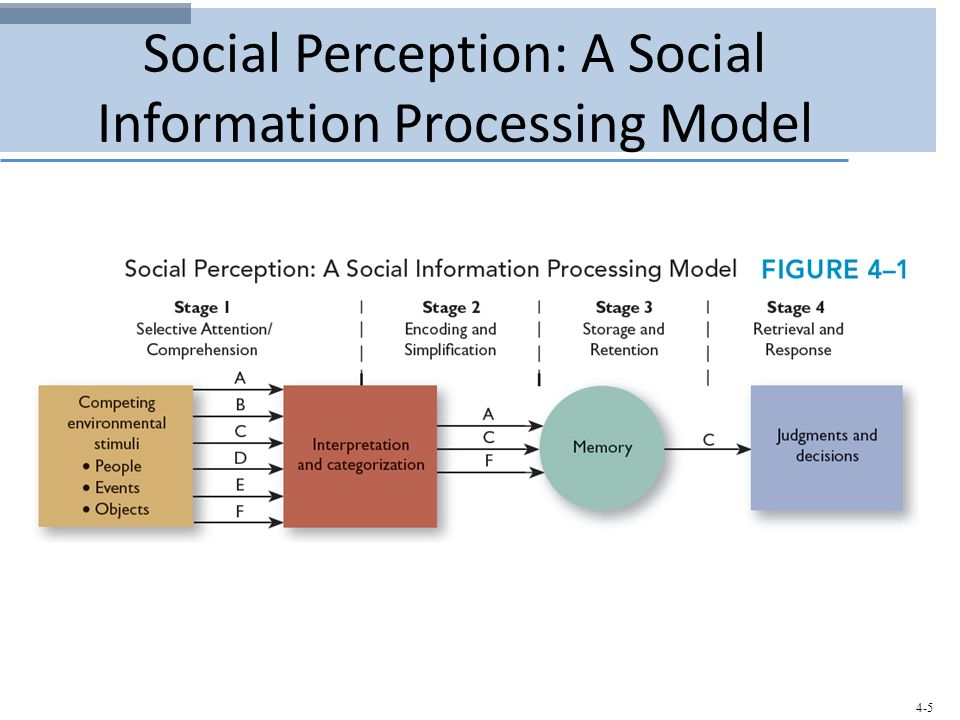 information processing and cognitive development Information processing and cognitive development information processing is a perspective (approach) to the study of cognition and cognitive development in which the mind is likened to a computer.