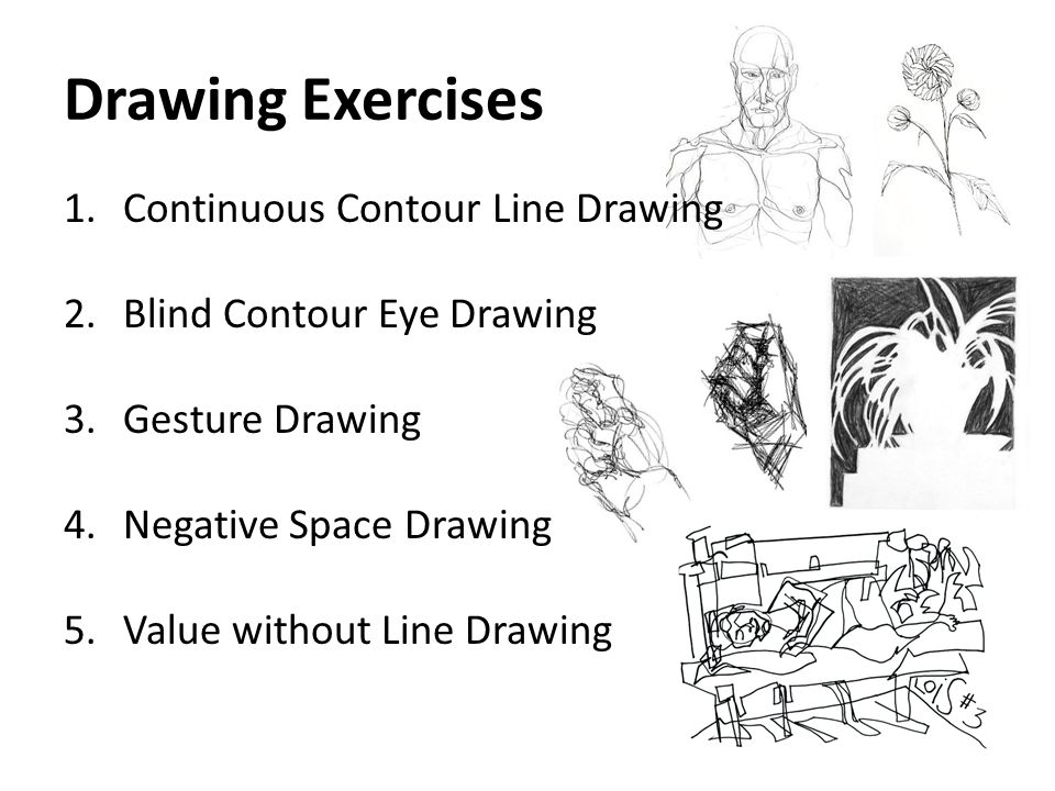 Drawing Exercises Continuous Contour Line Drawing