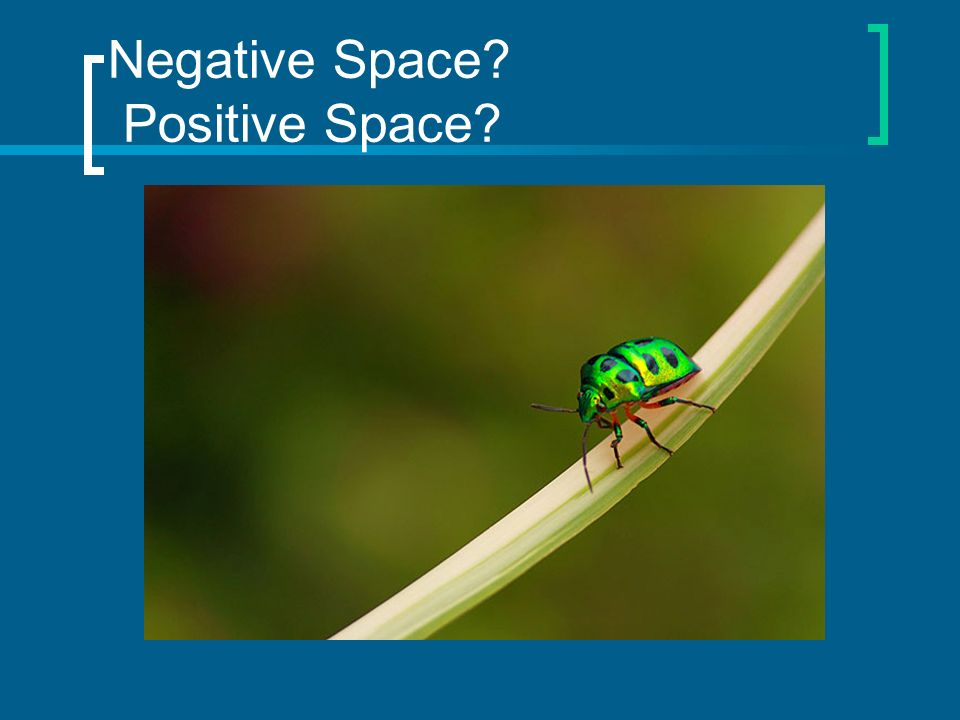 Negative Space Positive Space