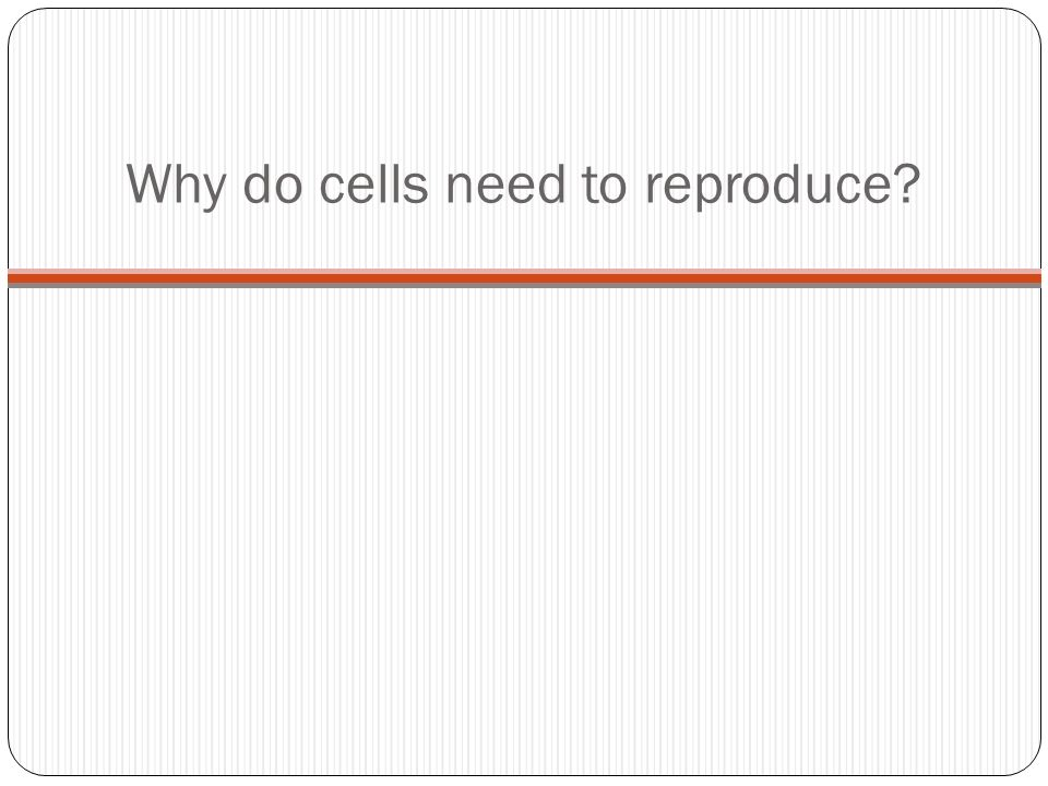 Cellular Reproduction Ppt Download
