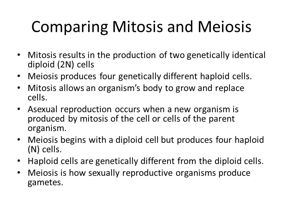 Cell division ppt video online download comparing mitosis and meiosis ccuart Image collections