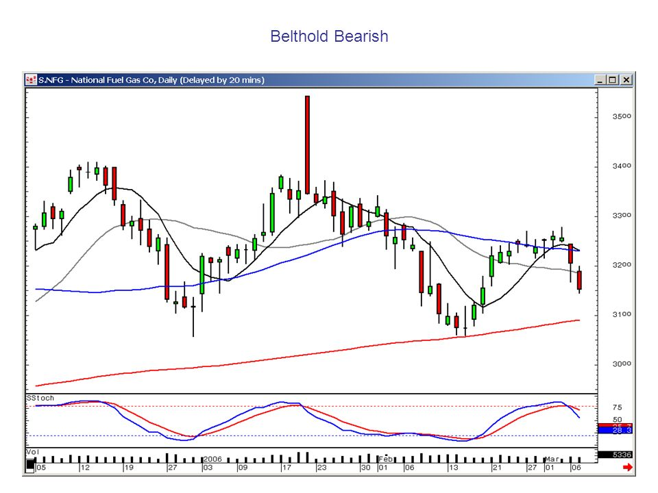 Belthold Bearish