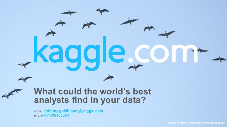 What could the world's best analysts find in your data