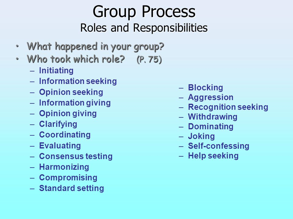 Group Process Roles and Responsibilities