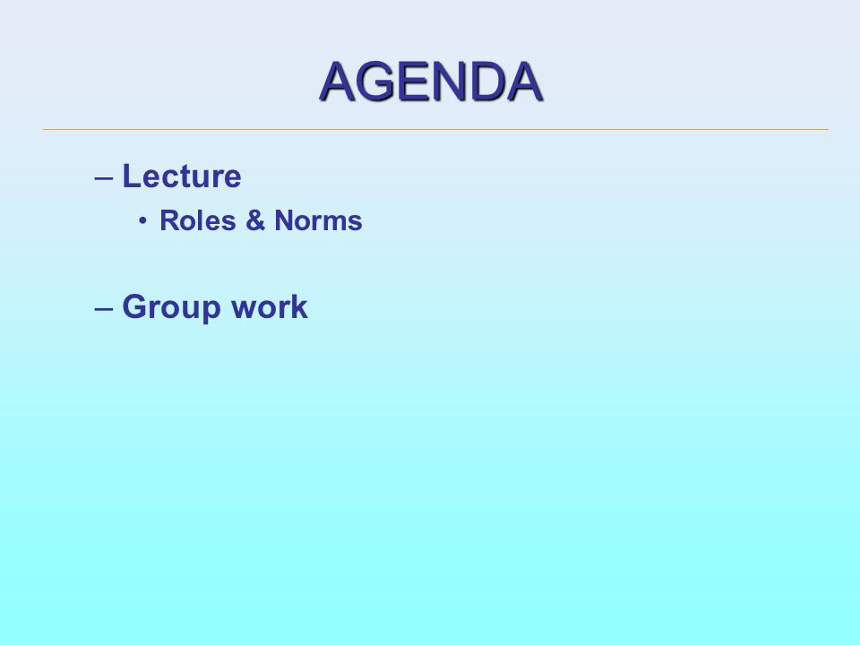 AGENDA Lecture Roles & Norms Group work