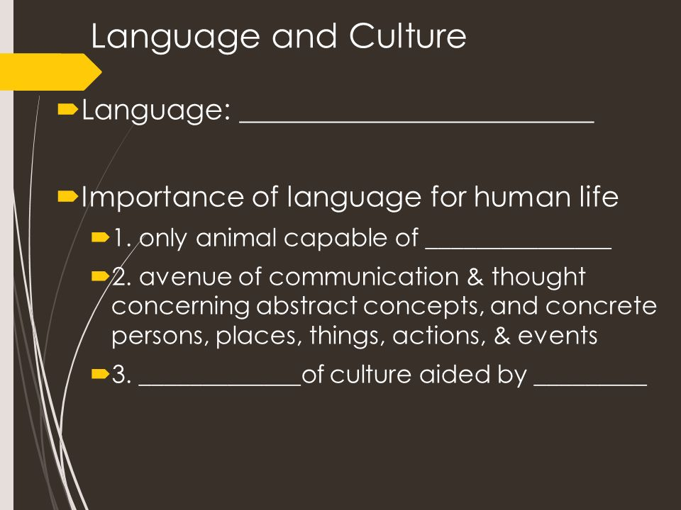 what is the importance of language in relationship to culture