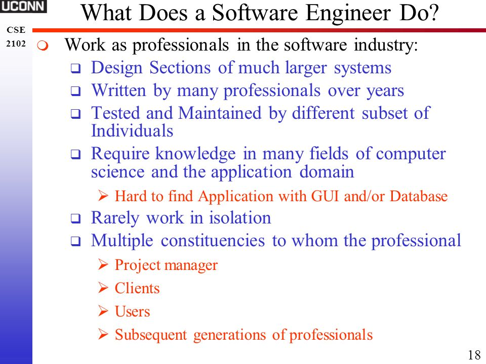 What Does a Software Engineer Do