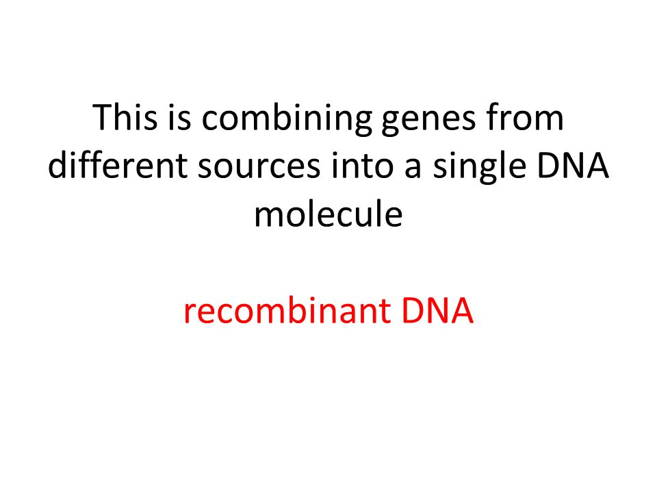 This is combining genes from different sources into a single DNA molecule recombinant DNA