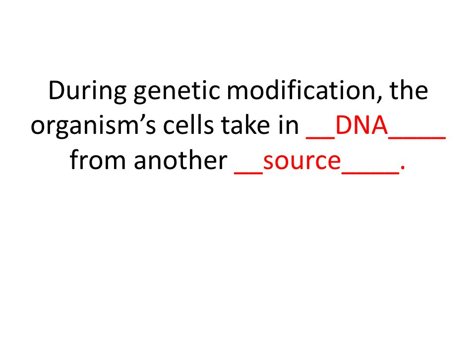 During genetic modification, the organism's cells take in __DNA____ from another __source____.