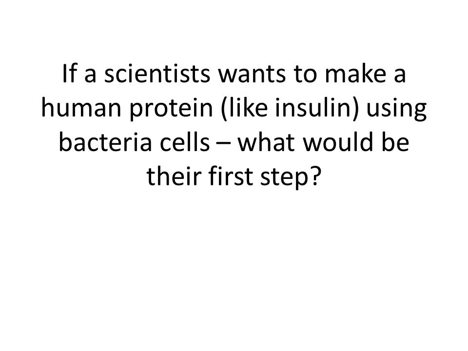 If a scientists wants to make a human protein (like insulin) using bacteria cells – what would be their first step