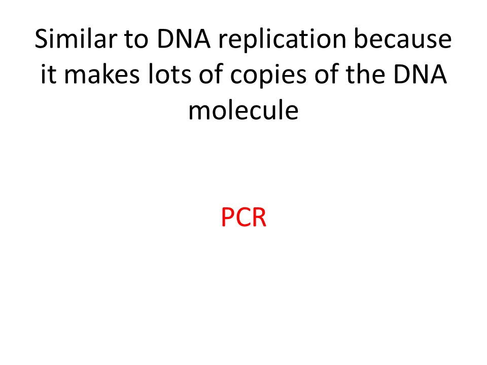 Similar to DNA replication because it makes lots of copies of the DNA molecule PCR