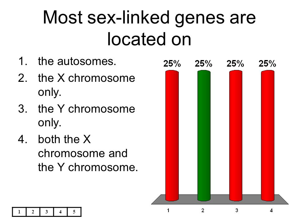 Many sex linked genes are located on 13