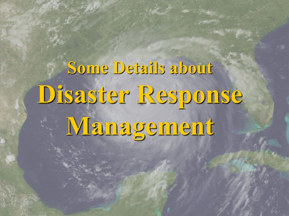 Some Details about Disaster Response Management