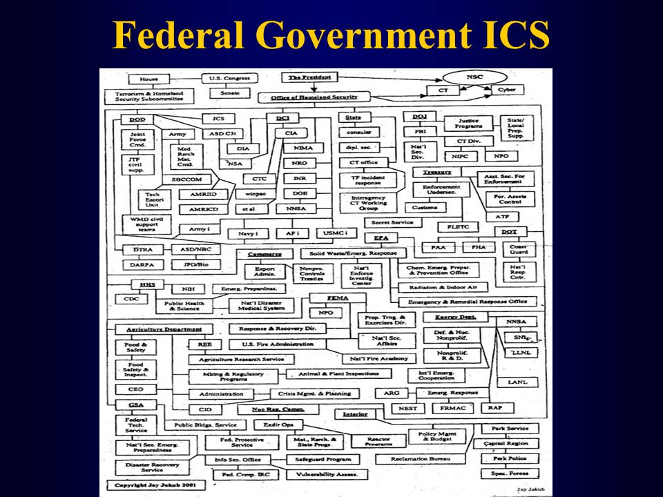Federal Government ICS